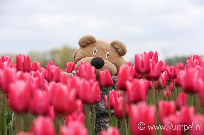 Ik tussen de bloemetjes!